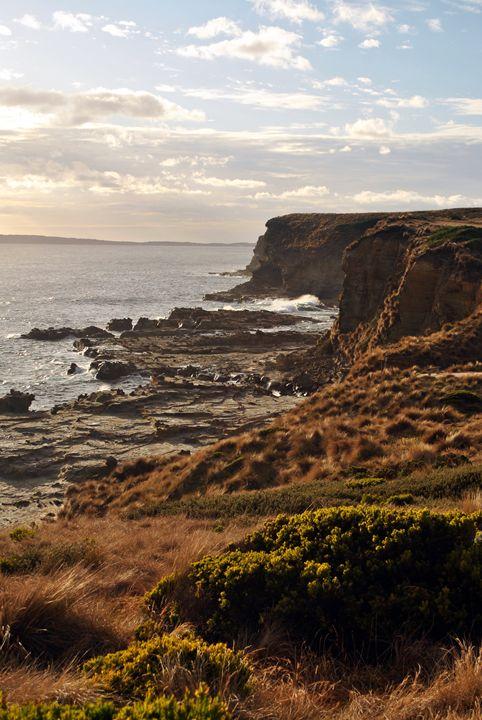 Ocean Cliffs - Eliza Grace