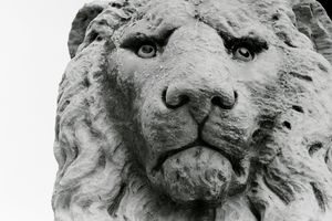 Photo of Sculpture of a lion