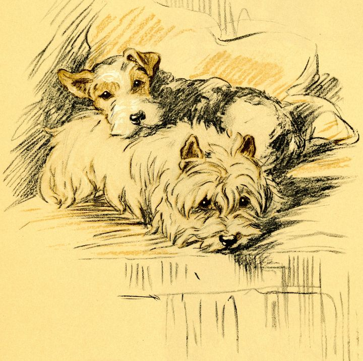 Terriers Dog prints by Lucy Dawson - Stonebrook Gallery