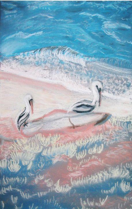 Pelicans on the Beach - Sapora Sparrow Reror
