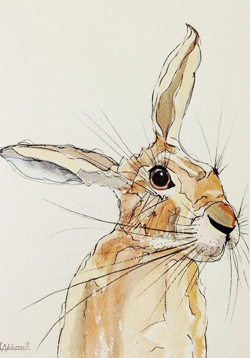 Hop Hare Listening - Lisa Addinsall Artist