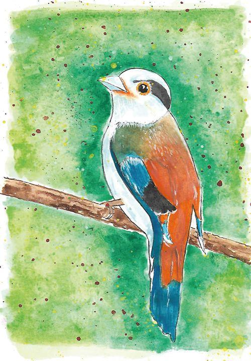 Little Wild Bird - Tiima Studio