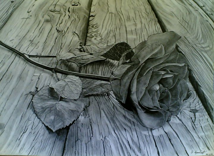 fallen rose - Darko Mrsovic