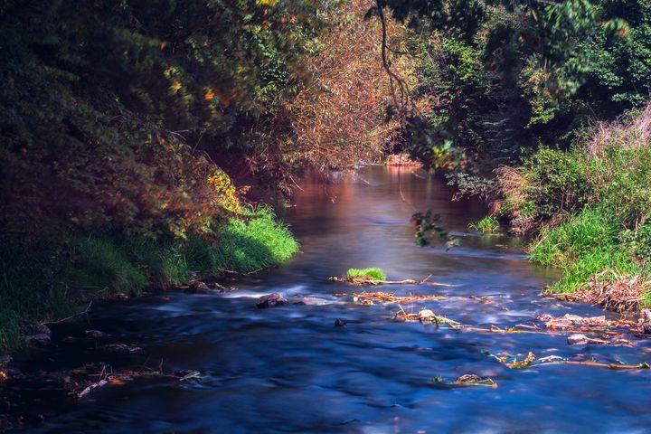 River Dürnach in swabia - My Pictures