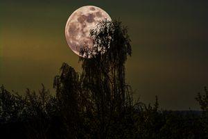 Moon mood over the region
