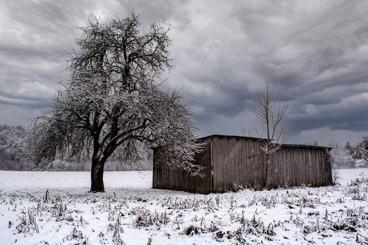 Walk through a snowy landscape - by Photoart-Naegele