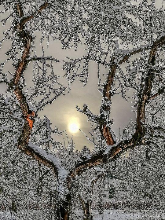 Morning walk - by Photoart-Naegele