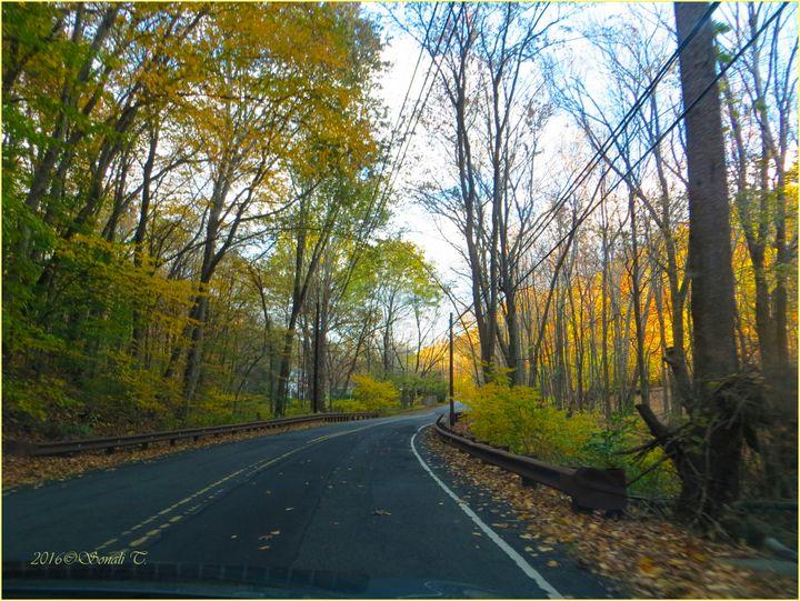 Autumn Trail - Sonali's Artistic Hues