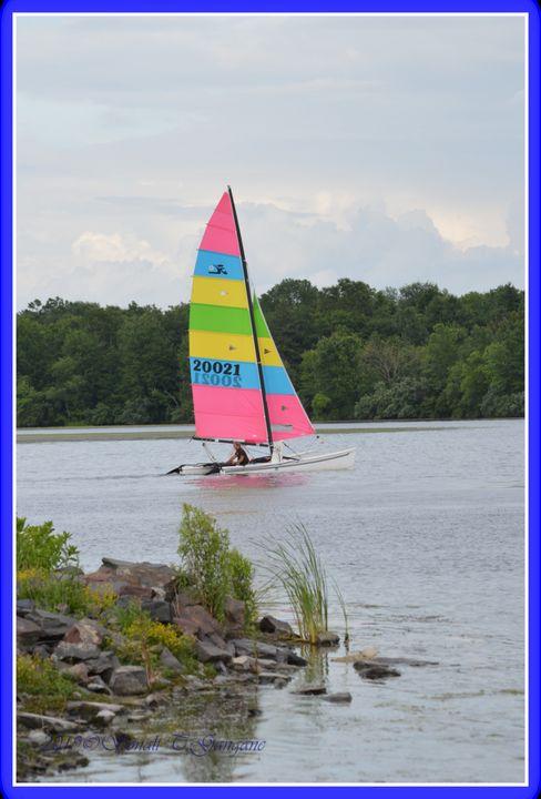 Sail boat - Sonali's Artistic Hues
