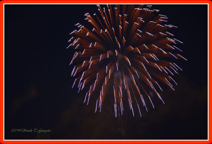 Fireworks - Sonali's Artistic Hues