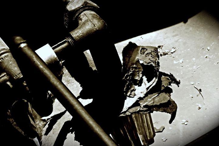 Broken - Rikki Lea's Photography
