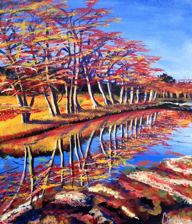 My River - Cameron Walls