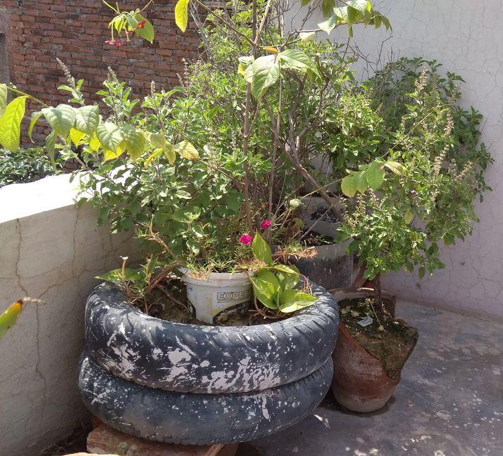 Broken vase - Anjali Dixit Sharma