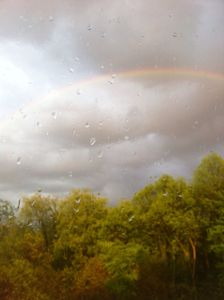 Raindrops & Rainbows