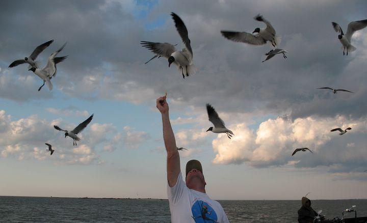 For the Birds - Nina La Marca, Artist's Photography