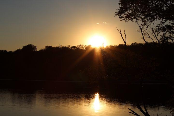Sunbeams at Sunset - Nina La Marca, Artist's Photography