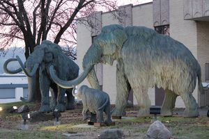 Urban Woolly Mammoth Family - Nina La Marca Artistic Photography