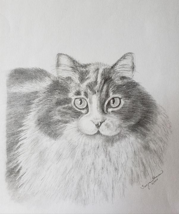 Cerino the Cat - Suzan Hennen