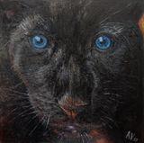 "Paint ""Blue eyes"""