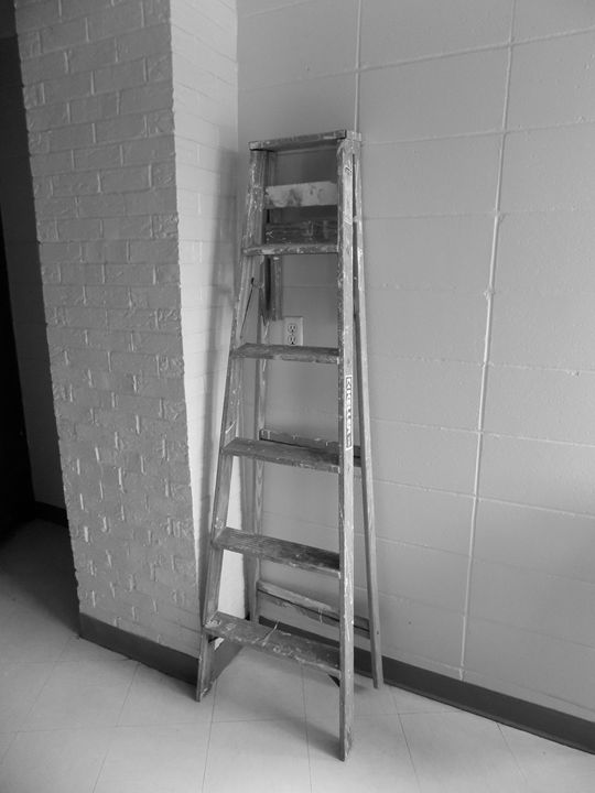 Ladder - Wildman