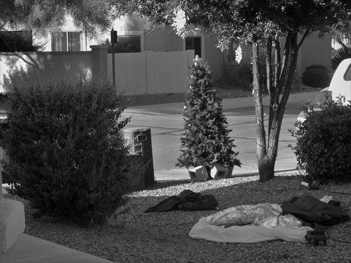 CHRISTMAS IN THE DESERT - Wildman