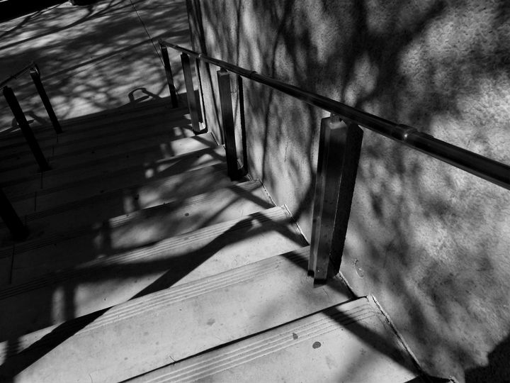 STEPPING INTO THE SHADOWS - Dylan McGarry