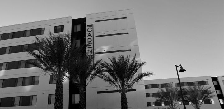 HOTEL AND PALMS - Dylan McGarry