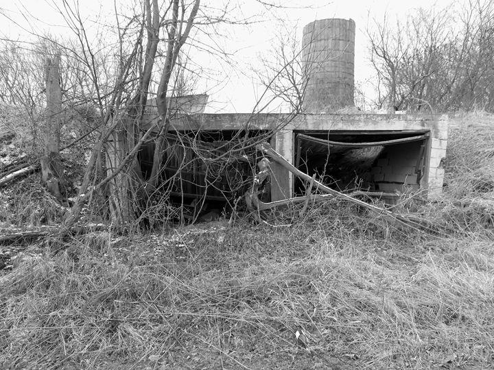 Abandoned - Wildman