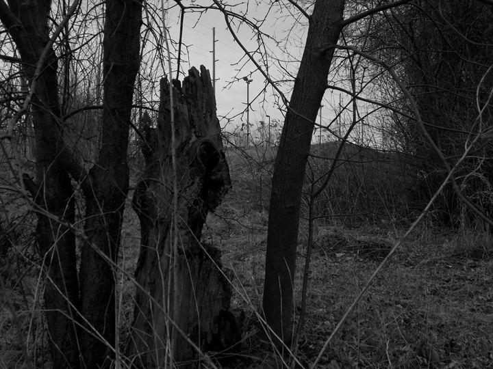 CREEPY - Dylan McGarry