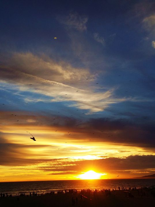 Kite Flying Through The Sunset Sky - J. Satterstrom Designs