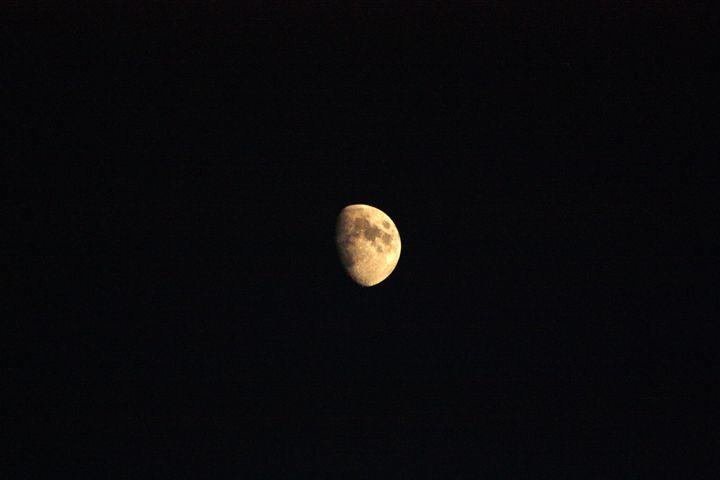 Moon Lit Night - J. Satterstrom Designs