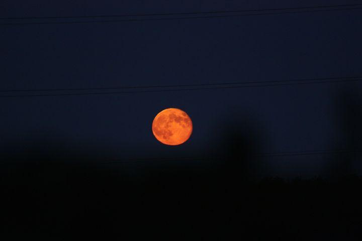 Glowing Harvest Moon - J. Satterstrom Designs