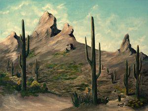The Daybreak in the Desert