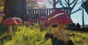 Mushrooms In The Park
