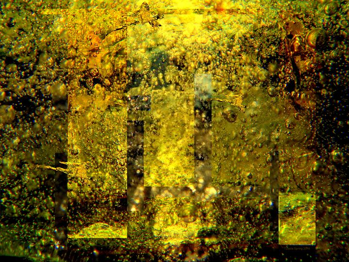 FIFTY SHADES OF GOLD II - Tussila Spring Fine art