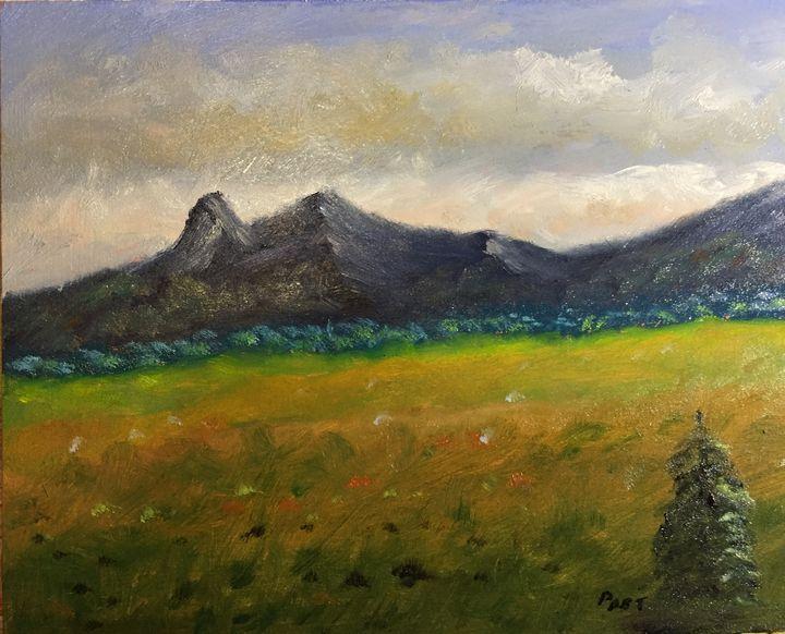 Mountain Meadow - Brian Post