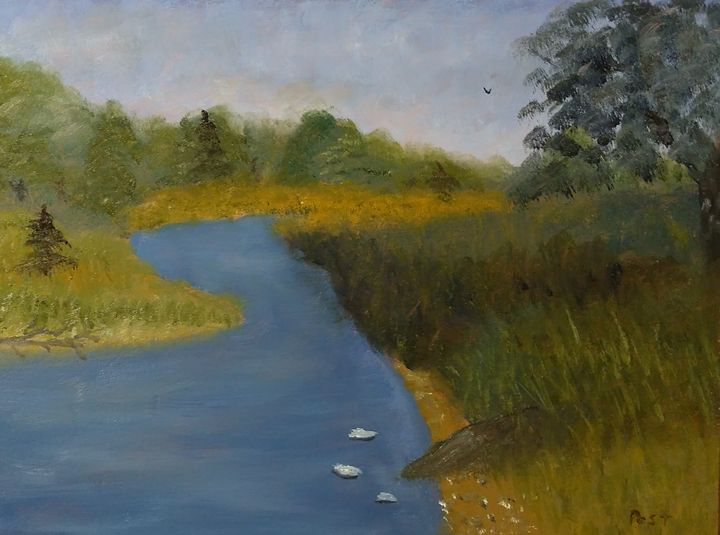 Rocky Saugeen River - Brian Post