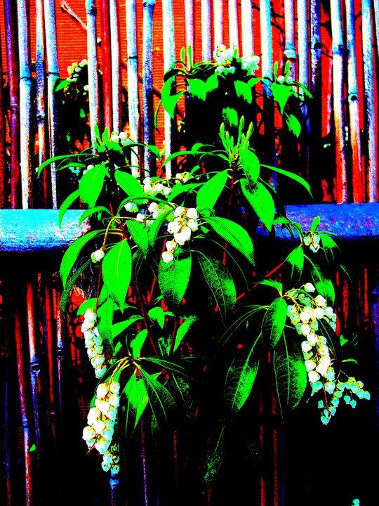 plant in RGB - Novo Weimar