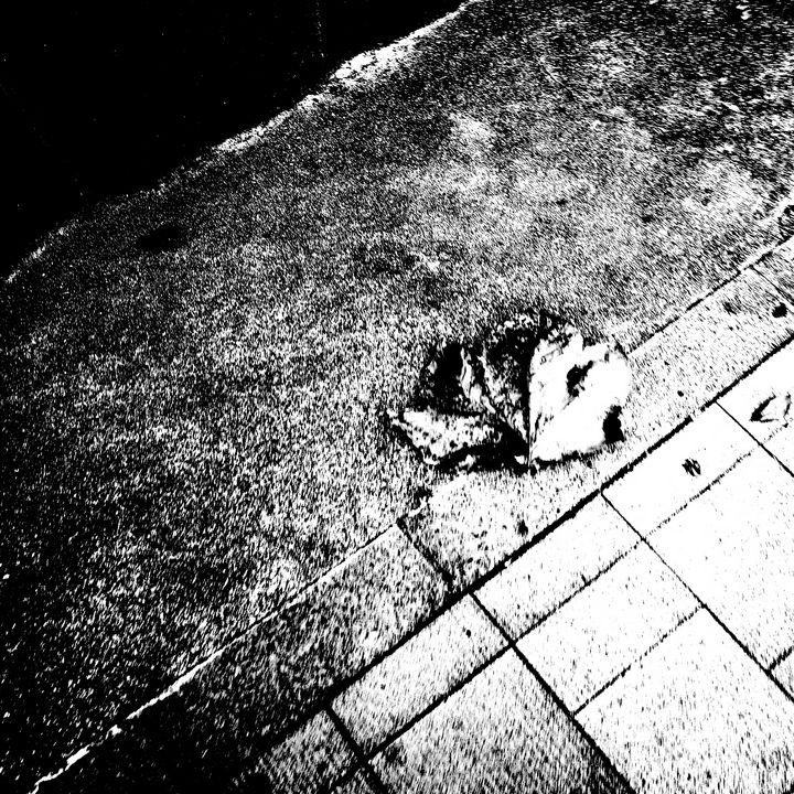 Reality on Pixel #BW0000484 - Novo Weimar
