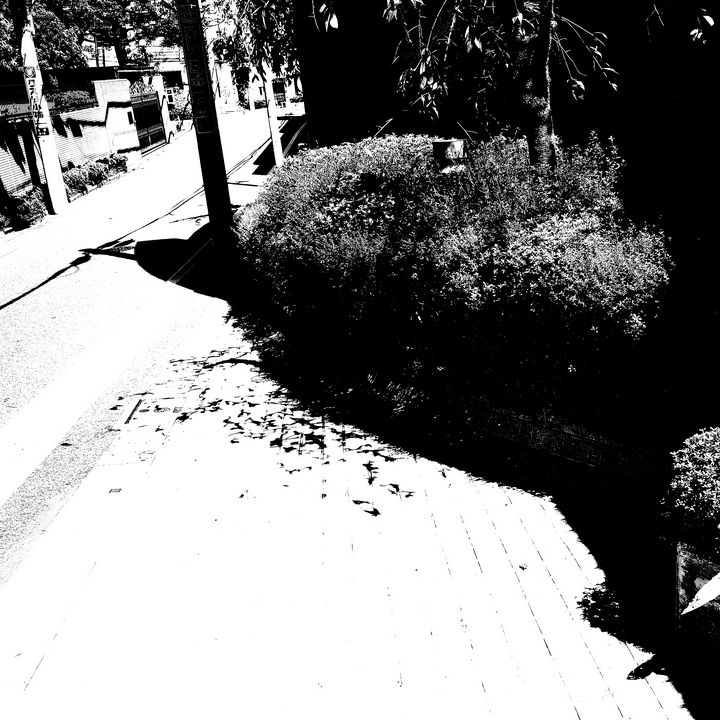 Reality on Pixel #BW0000490 - Novo Weimar
