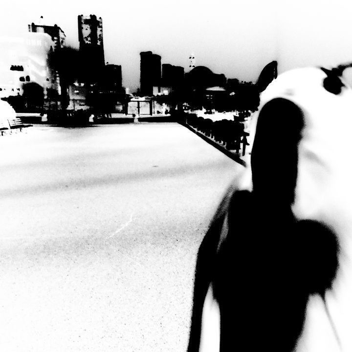 Reality on Pixel #BW0000621 - Novo Weimar