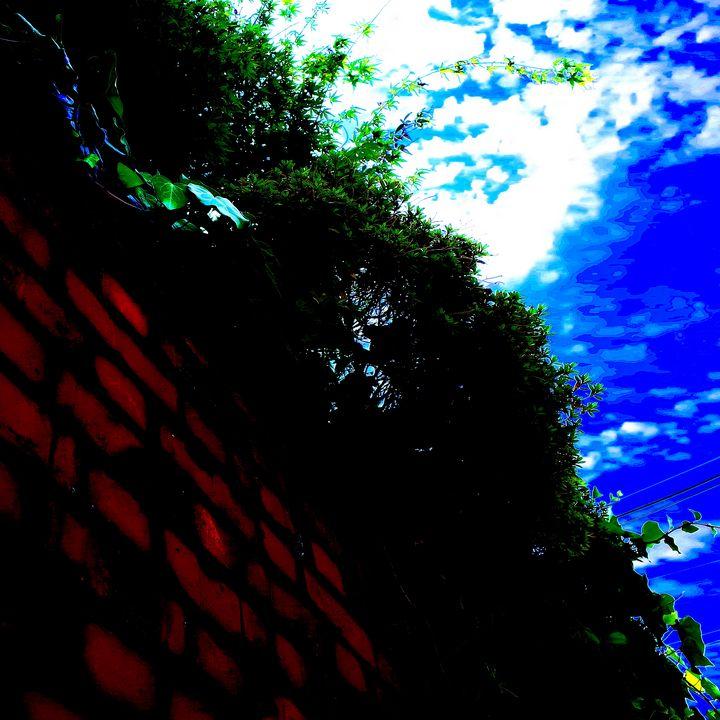 Reality on Pixel #CL0000652 - Novo Weimar