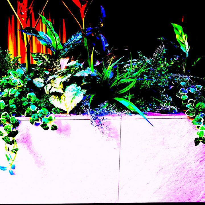 Reality on Pixel #CL0000700 - Novo Weimar