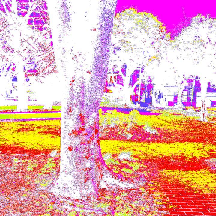 Reality on Pixel #CL0000886 - Novo Weimar