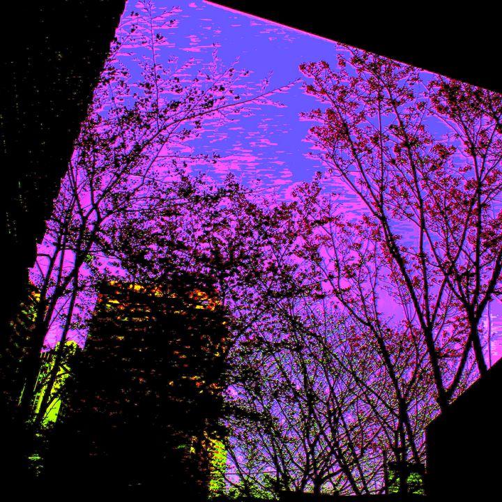 Reality on Pixel #CL0000941 - Novo Weimar