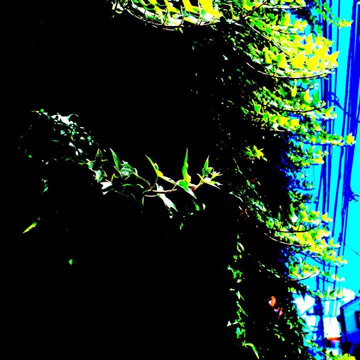 Reality on Pixel #CL0000988 - Novo Weimar