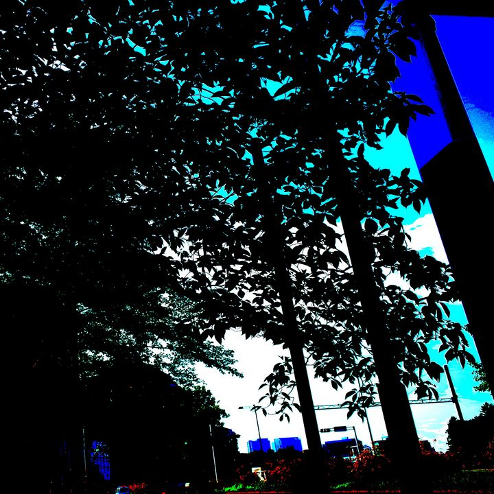Reality on Pixel #CL0001084 - Novo Weimar