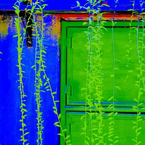Reality on Pixel #CL0000095 - Novo Weimar