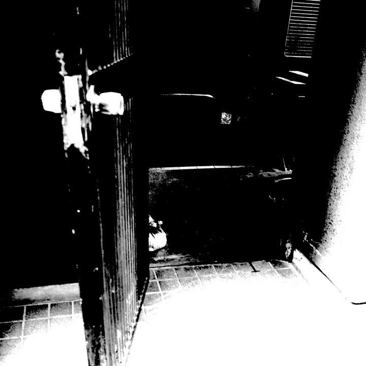 Reality on Pixel #BW0001111 - Novo Weimar