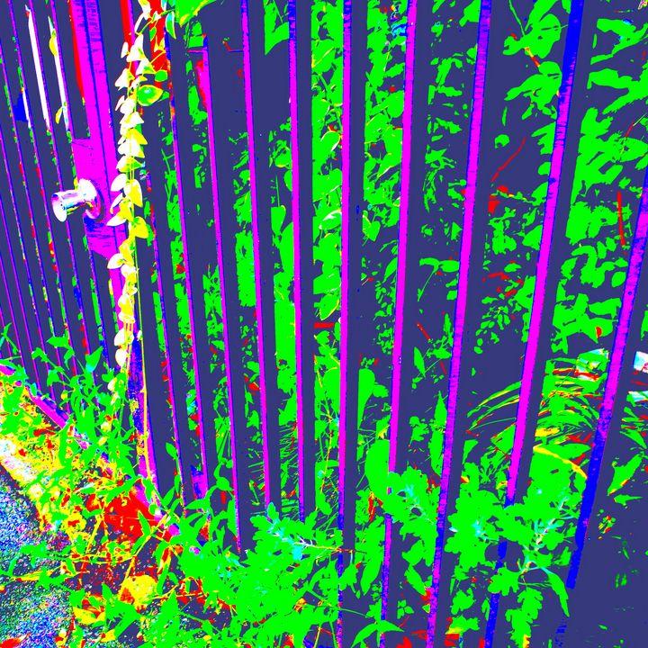 Reality on Pixel #CL0001145 - Novo Weimar